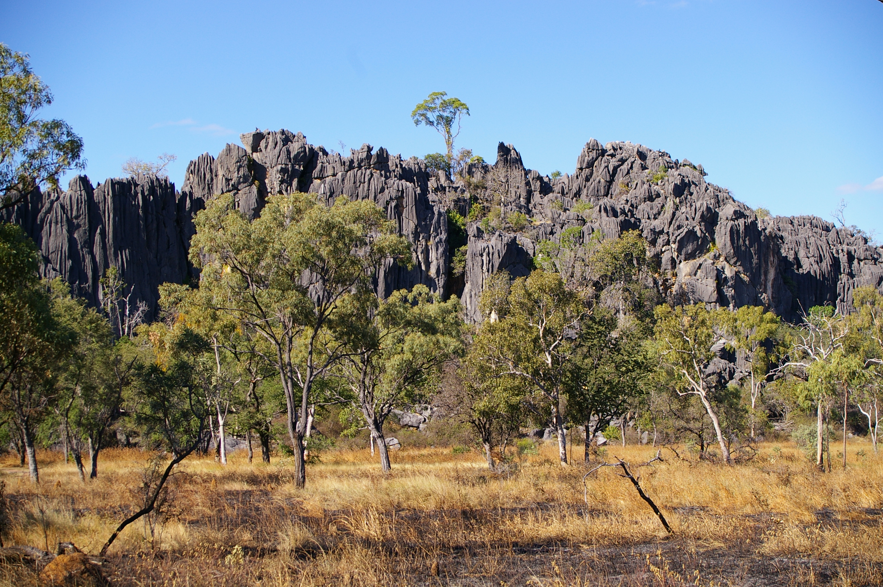 CHILLAGOE_CAVES_260706.JPG